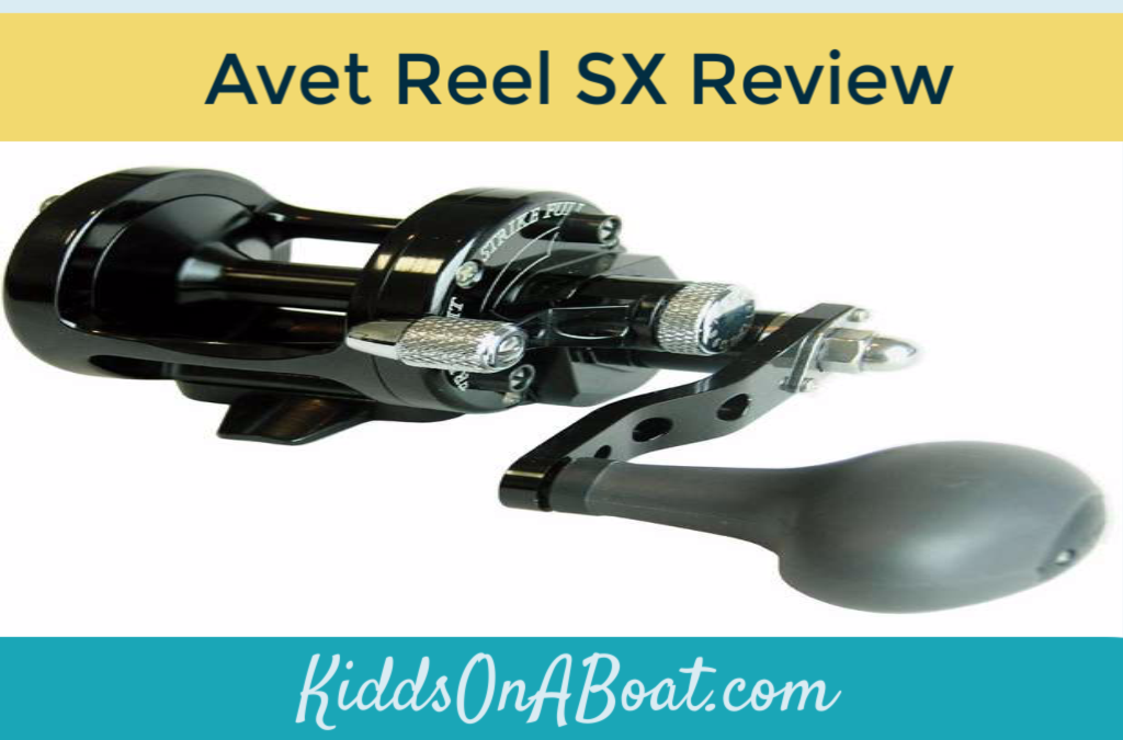 Review- Avet Reel SX